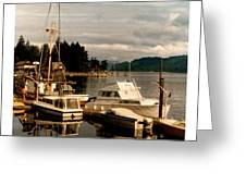 Domino At Alderbrook On Hood Canal Greeting Card