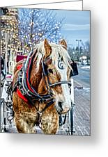 Donald 2 Greeting Card by Baywest Imaging