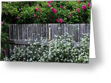 Don't Fence Me In - Wild Roses - Old Fence Greeting Card