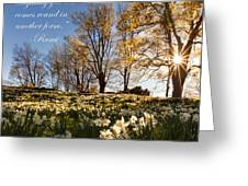 Don't Grieve Greeting Card