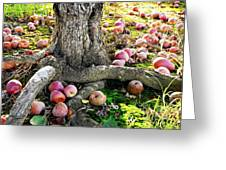 Don't Sit Under The Apple Tree With Anyone Else But Me Greeting Card