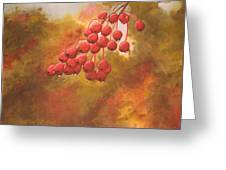 Door County Cherries Greeting Card by Rick Huotari
