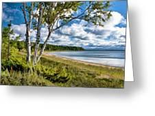 Door County Europe Bay Birch Greeting Card