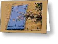 Doors In St. Thomas Greeting Card