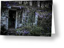 Doorway And Flowers Two Greeting Card