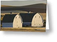 Double Barns Greeting Card