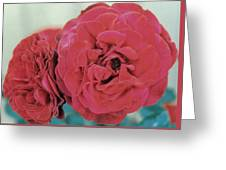 Double Desert  Red Roses Greeting Card