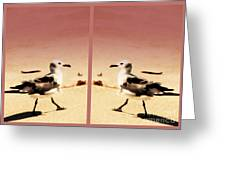 Double Gulls Collage Greeting Card
