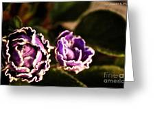 Double Ruffle Greeting Card