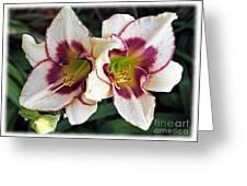 Double The Bloom Greeting Card