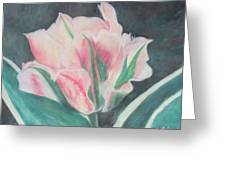 Double Tulip Greeting Card by Cathy Lindsey