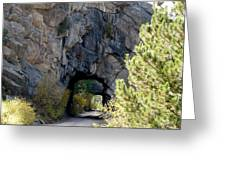 Double Tunnel - Eleven Mile Canyon Greeting Card