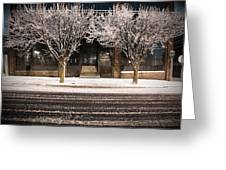 Doubletree Greeting Card by Scott Moore