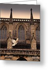 Dove Flying By Church Greeting Card