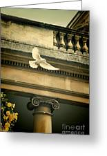 Dove In Flight Greeting Card