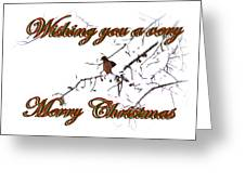 Dove - Snowy Limb - Christmas Card Greeting Card