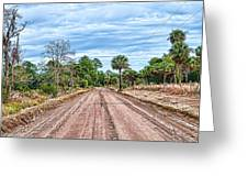 Down Chisolm Island Road Greeting Card