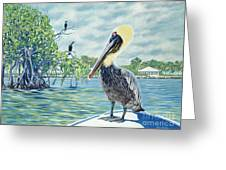 Down In The Keys Greeting Card