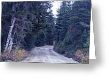 Down Nature's Highway Greeting Card