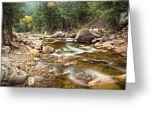 Down Stream Greeting Card