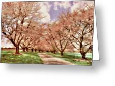 Down The Cherry Lined Lane Greeting Card