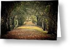 Down The Lane Greeting Card by Gail Falcon