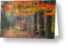 Down The Trail Square Greeting Card by Bill Wakeley