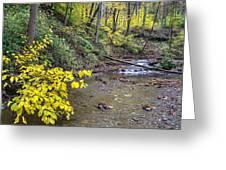 Downstream Blue Hen Falls Greeting Card