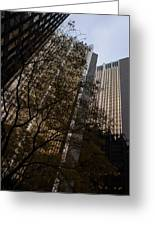Downtown Autumn Greeting Card