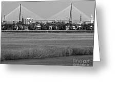 Downtown Marsh Greeting Card