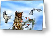 Downy And Titmouse Playing On Lichen Stump Greeting Card