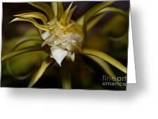Dragon Flower Greeting Card