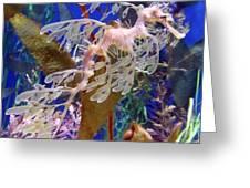 Dragon Sea Horse Greeting Card