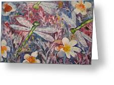 Dragonflies And Daisies Greeting Card