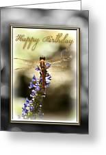 Dragonfly Birthday Card Greeting Card