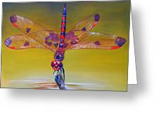 Dragonfly Colors Greeting Card