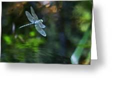 Dragonfly No 1 Greeting Card