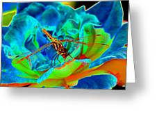 Dragonfly On A Cosmic Rose Greeting Card