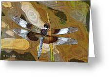 Dragonfly Waiting For A Fly Greeting Card