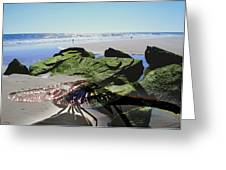 Dragonfly's Day At The Beach Greeting Card