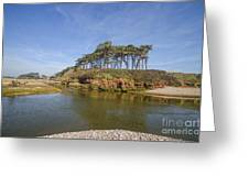 Dragons Back Budleigh Salterton Greeting Card