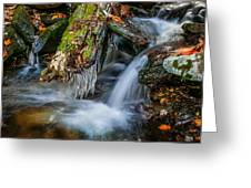 Dragons Teeth Icicles Waterfall Great Smoky Mountains  Greeting Card