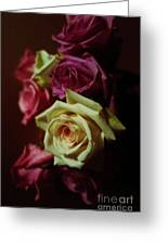 Dramatic Purple And Yellow Roses Greeting Card