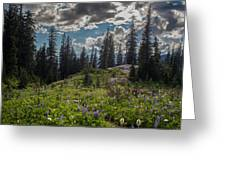 Dramatic Rainier Flower Meadows Greeting Card
