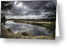 Dramatic Swamp... Greeting Card by Israel Marino