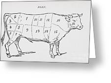 Drawing Of A Bullock Marked To Show Eighteen Different Cuts Of Meat Greeting Card by English School