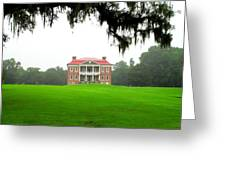 Drayton Hall Approach Greeting Card