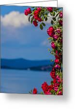 Dream Full Of Roses Greeting Card