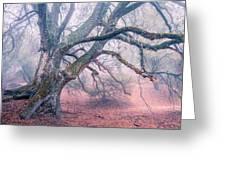 Dream Oak II Color 2 Greeting Card