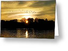 Dream Of A Sunset Greeting Card